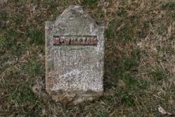 Albert Dale McWilliam