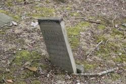 James Lemuel Son of Mary McGlaughlin