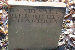 Henry Salts
